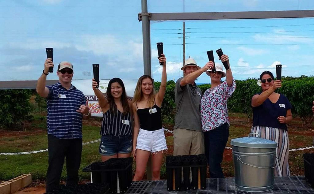 Visitors to the kauai coffee estate raise their seedling containers in a cheers after planting coffee trees on the farm tour